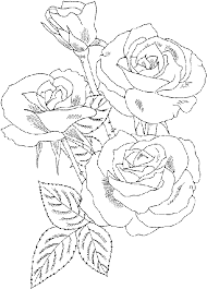 Small Picture rose colouring page colouring pages Pinterest Rose