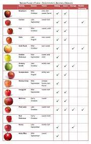 Types Of Apples Chart Apple Varieties Apple Varieties Apple Types Apple Chart