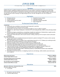 professional vice president templates to showcase your talent resume templates vice president