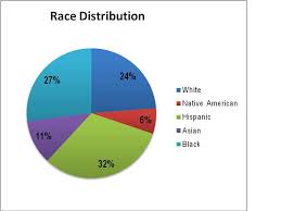 figure 1 race distribution of partints that attend the work on social a