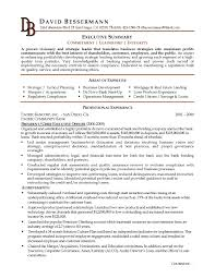 How To Write An Executive Summary For A Resume 11 Things Grad Kaštela