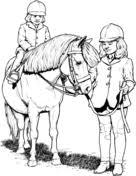 Shetland Pony Kleurplaat Gratis Kleurplaten Printen