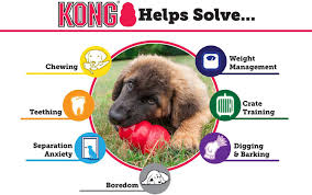 Perfect Hound Kong Dog Toy User Guide Everything From