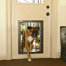passport pet door wall kit exterior door with pet door high tech pet door high tech pet power pet electronic pet door