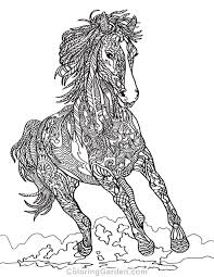 Printable horse coloring page to print and color for free : Horse Coloring Pages For Adults Pictures Whitesbelfast