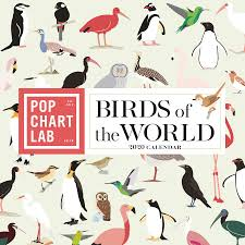 Amazon Pop Chart Lab Birds Of The World By Pop Chart Lab Wall Calendar 2020