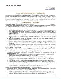 Business Owner Resume Sample Best Of Resume Samples For Business Analyst Resume Sample Directory