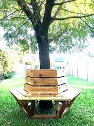 Seating Around Tree Tobaccotour Co
