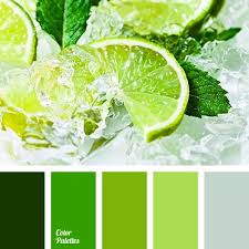 What Color Match With Green Extraordinary 9 Inspiration Pine And Fresh On  Pinterest.