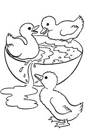 Dessins Colorier Canards Coloriages Pour Enfants