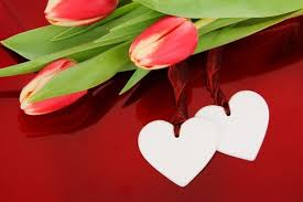 Love Flower Free Stock Photos Download 4040 Free Stock Photos Simple Love Flower Photo Download