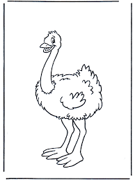 Small Picture Awesome Ostrich Coloring Page 68 On Free Coloring Book With