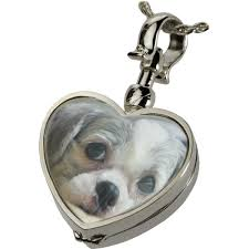 heart pet urn jewelry shown with puppy photo