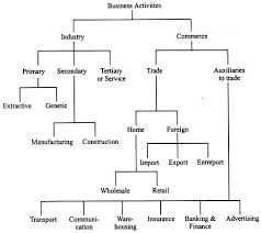 Flow Chart Of Classification Of Resources