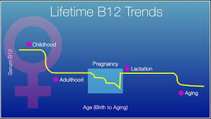 Vitamin B12 How To Reach An Optimized Level For Women
