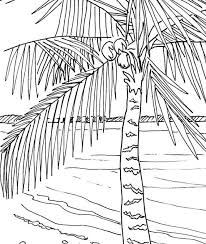 Small Picture Palm tree coloring page embroidery pattern pdf download