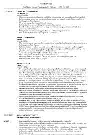 Veterinary Resumes Veterinarian Resume Samples Velvet Jobs