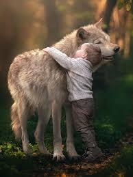 волк обнимает девушку картинка