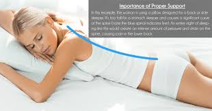 Note the intense curve of the spine that non-ideal support creates for  stomach sleepers