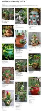 5 strawberry pot planter ideas flowers