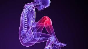 partial anterior cruciate ligament