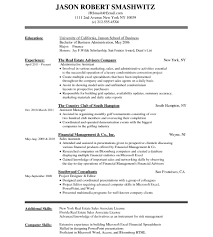 Free Resume Database Ms Access Developer Resume Database Vba Formidable Top Thesis 46