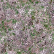 Dirt grass texture seamless Sand Dirtygrassseamlesscolorjpg 89 Mb 105 Downloads Texture Pack 4k Seamless Grass Dirt Unity Asset Store 4k Seamless Grass Dirt Ground Texture With All Shader Maps