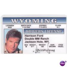 On Star Ebid Harrison Wars Han License Fun United 64082698 Solo Ford Kingdom Drivers Photo Novelty Card