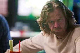 Frank Gallagher Quotes Beauteous 48 Words Of Wisdom From Frank Gallagher's Surprising Intellect