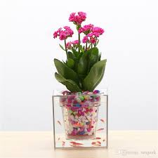 office flower pots. creative clear tube plant pot flower decorative selfwatering planter fish tank for home office desk free shipping pots e