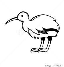 Black And White Bird Kiwiのイラスト素材 46271761 Pixta
