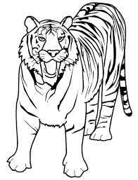 Small Picture of Bengal Tiger Coloring Page Download Print Online Coloring Pages