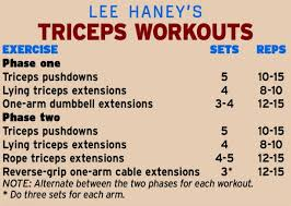 similar muscle group sut exle 13flex lee haney triceps extension chart