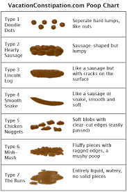 Stool Odor Chart The Poop Chart Vacation Constipation