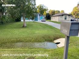 2157 pine ridge rd naples fl 34109. Get Lawn Care Services In Naples From Fidelis Landscaping