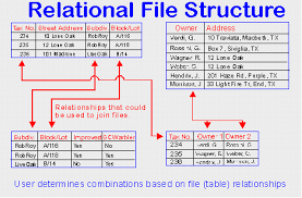 Relational Databases Example After Spreadsheets Database Business Solutions Shopworks