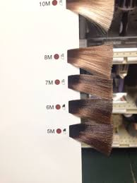 Matrix Hair Color Chart 2019 Matrix Color Sync Mocha Color Swatches Hair In 2019