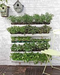 herb wall gutter herb garden
