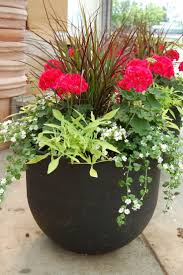 Front Porch Potted Plants Ideas & Tips : Fetching Image Of Accessories For Front  Porch Decoration