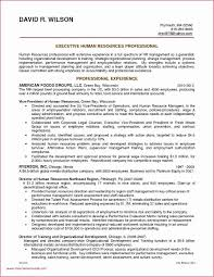 Java Developer Sample Resume New Resume Templates Java Developer