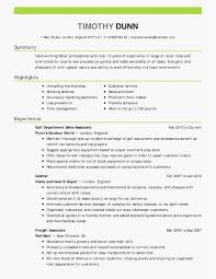 Professional Cover Letter Example New Resume Cover Letter Template