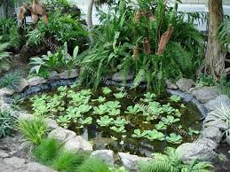 Small Picture Small Pond Landscape