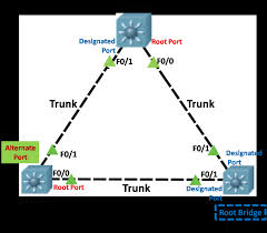 Designated Port Vs Root Port Rstp States Archives Networkustad