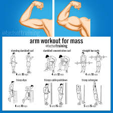 Pin By Girls Favourite On Workout Biceps Workout