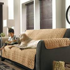 ideas furniture covers sofas. black sofa with mocca storehouse furniture slipcovers on wooden floor floral rug matched white ideas covers sofas