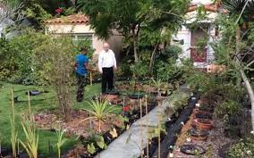 florida vegetable gardening. City Of Fort Lauderdale, FL : Vegetable Gardening In South Florida V