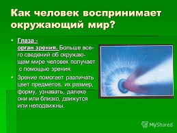 Презентация на тему Гигиена зрения prezentacii com Как человек  2 Как человек воспринимает