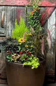 142 Best Winter Container Gardens U0026 Wreaths Images On Pinterest Container Garden Ideas For Winter