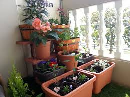 balcony vegetable garden apartment