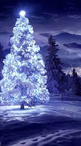 christmas tree background iphone 6. Beautiful Background Lighting Star Christmas Tree IPhone 6 Wallpaper For 2014   Landscape Intended Tree Background Iphone H